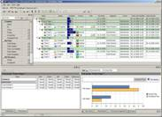 Project network software
